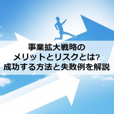 事業拡大戦略のメリットとリスクとは